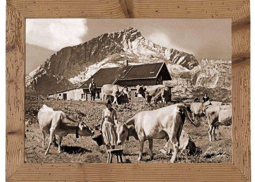 Garmisch-Partenkirchen, Hochalm, 1705 m gegen Alpspitze, 2628 m