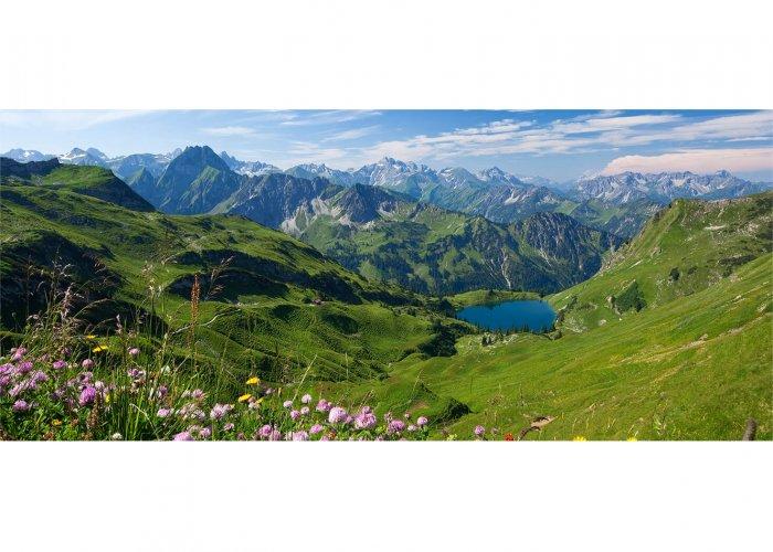 Bergwiese am Seealpsee mit der Höfats und den Allgäuer Alpen im Nebelhorngebiet bei Oberstdorf, Allgäu, Schwaben, Bayern, Deutschland